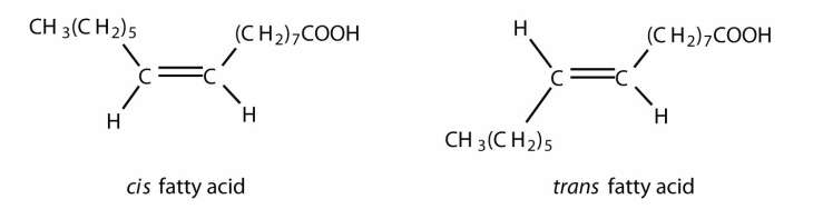 Table 171 Some Common Fatty Acids Found In Natural Fats